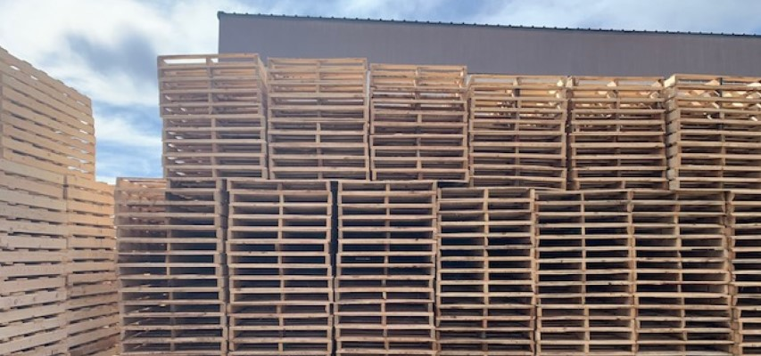 Brand New Wooden Shipping Pallets for Sale in Phoenix, Arizona
