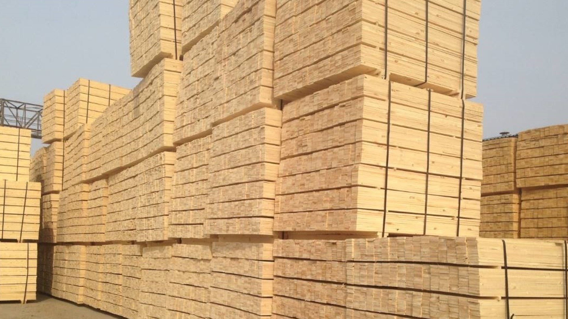Industrial Timber Company and Pallet Cut Stock Supplier in Phoenix, Arizona