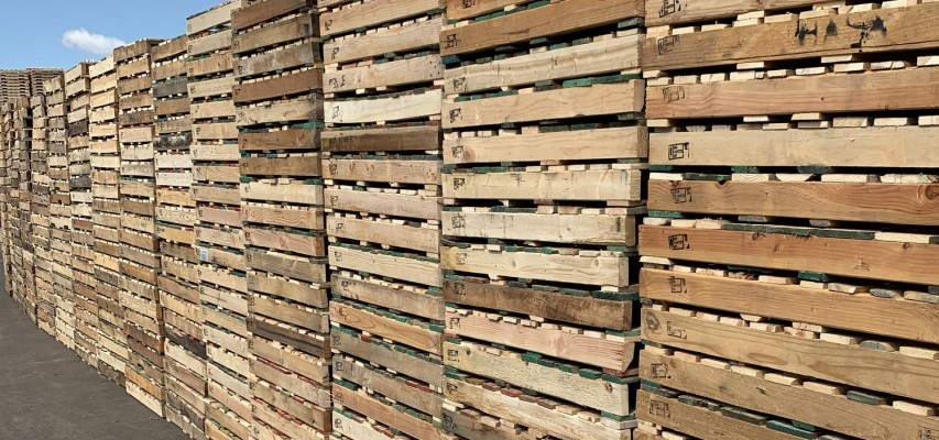 Pallets for Sale - Buy Used Pallets in Phoenix, Arizona